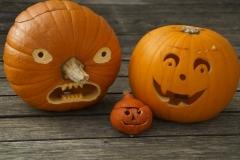 halloween_tok_csalad