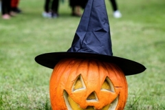 halloween_tok_vidam