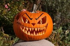 remiszto_halloween_tok1