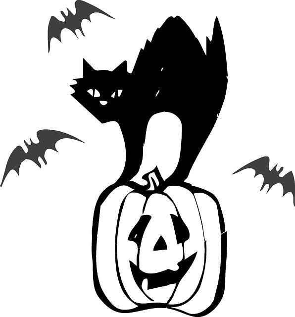 Halloween színező tök és macska